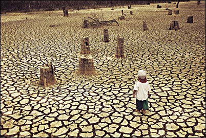 the history of deforestation and its devastation in brazil Like california, much of brazil is gripped by one of the worst droughts in its history huge reservoirs are bone dry and water has been rationed in são paulo, a megacity of 20 million people in .