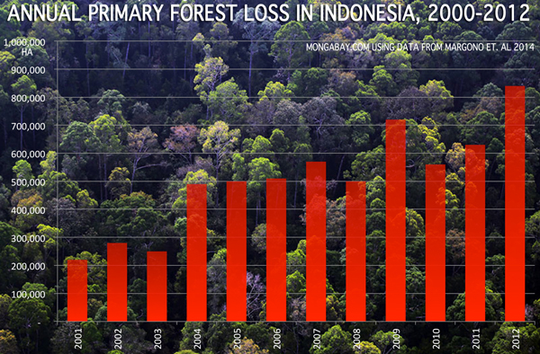 Indonesia now has the world's highest absolute rate of forest destruction (from Mongabay.com).