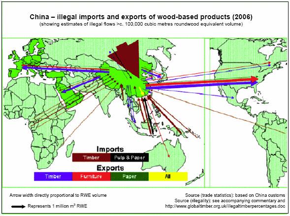 China's addiction to timber