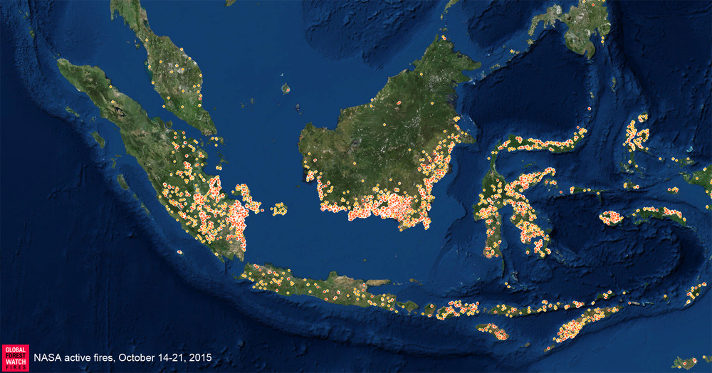 A nation ablaze -- Indonesian fires shown by Global Forest Watch.