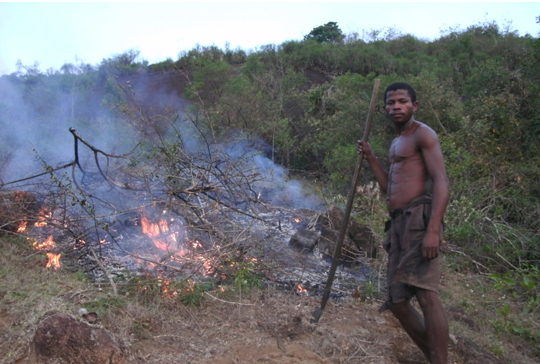Farming is inefficient across large expanses of the world, especially in developing nations such as this slash-and-burn plot in Madagascar.