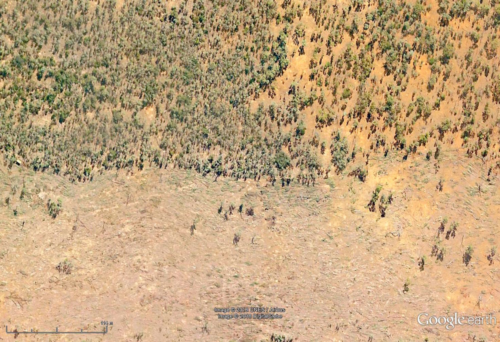 Aerial photograph showing land-clearing