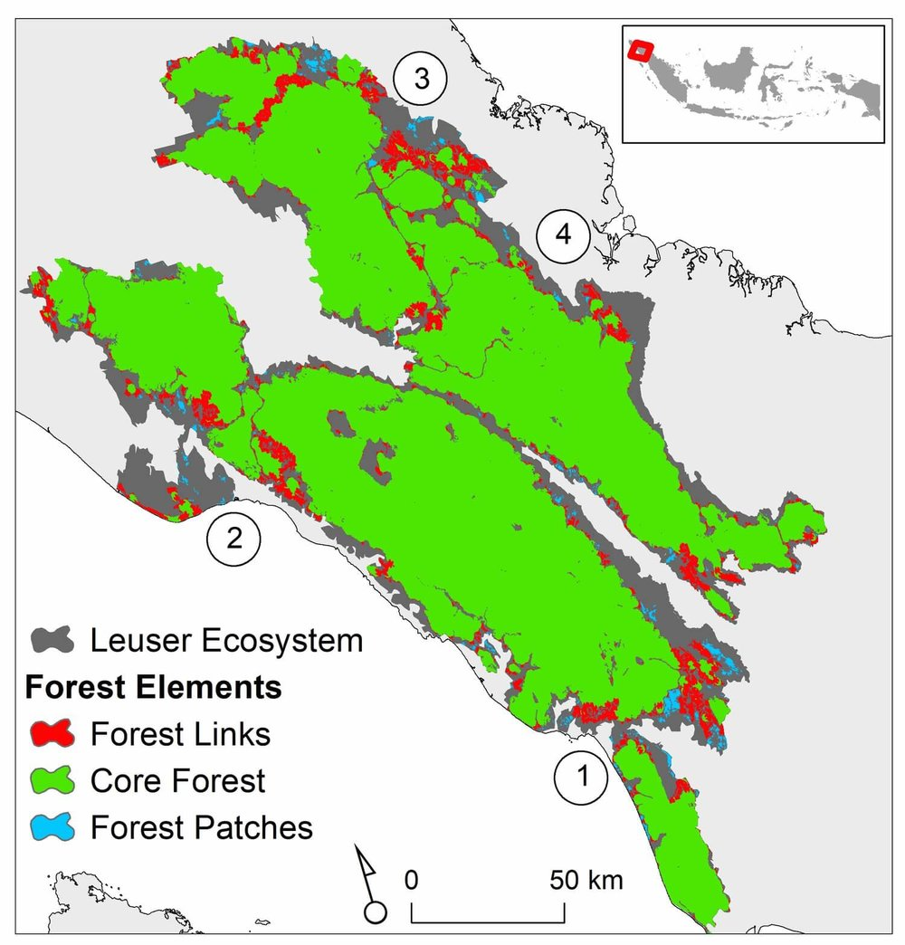 """Forest links"" -- shown in red -- provide vital connections between major forest blocks of the Leuser Ecosystem.  Areas numbered 1-4 are hot-spots of destructive road building."