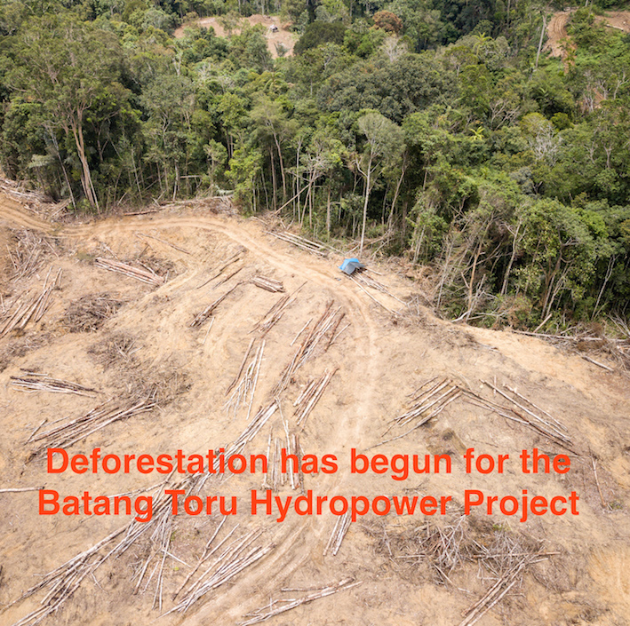 Deforestation-Batang Toru-Sumatran Orangutan Society.jpg