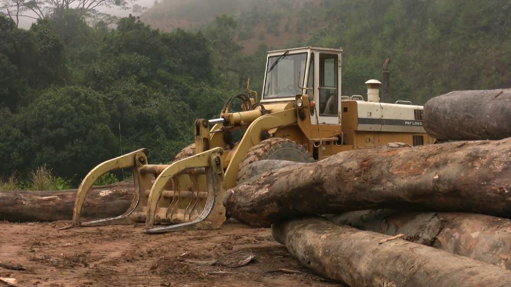 rainforest-logging-industry-deforestation-jungle-forest-tropical-logs-vietnam_htr4rl2x__F0010.png