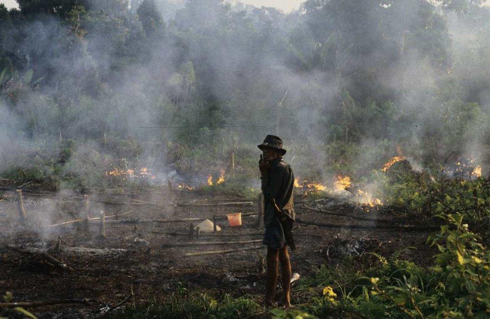 Fire-Borneo-Jed-Brodie.jpg