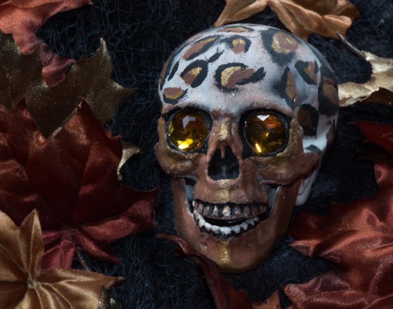 Leopard Skull  $25.00