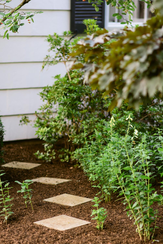 150609_garden_003.jpg