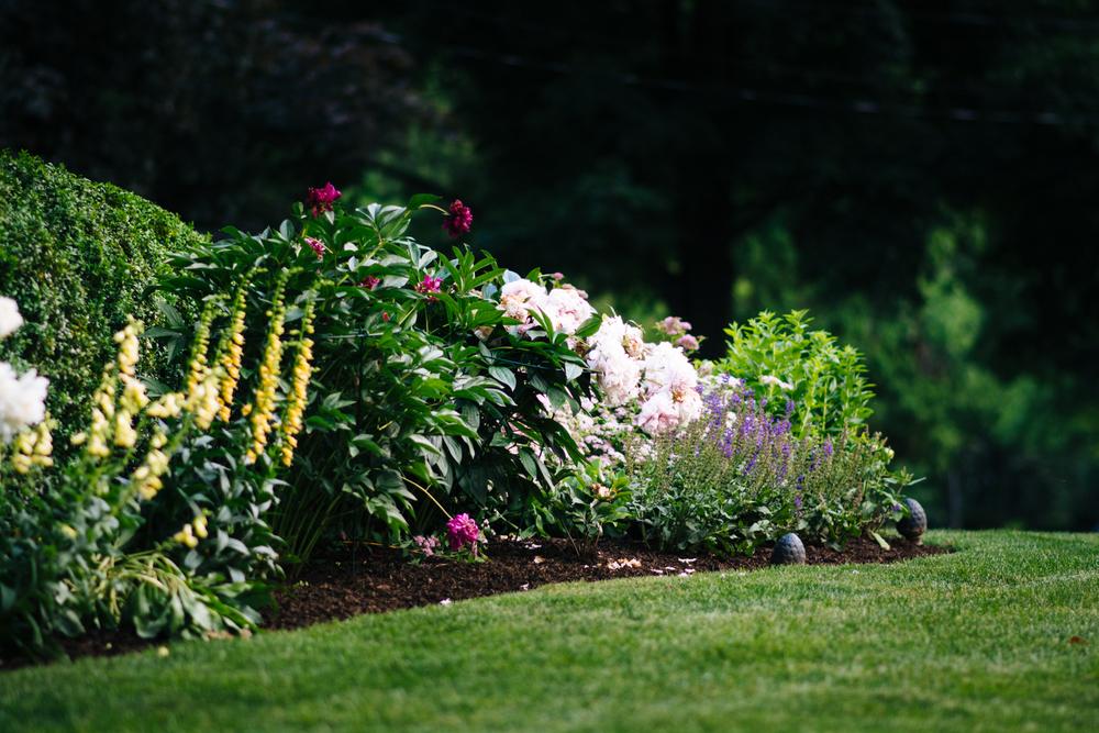 150609_garden_010.jpg