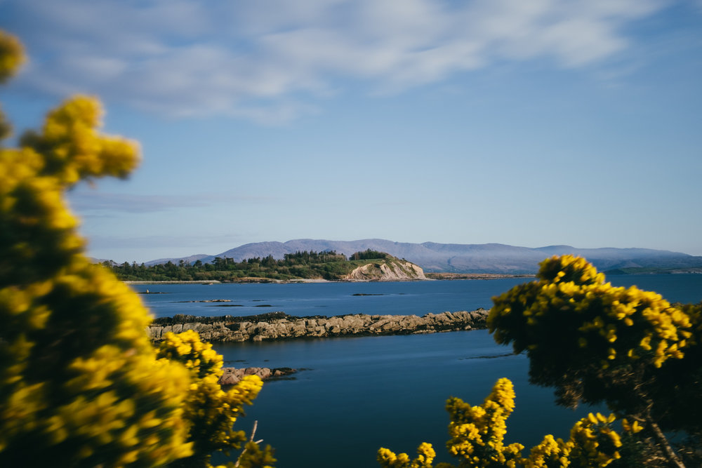 The coastline at Parknasilla Resort, Ring of Kerry