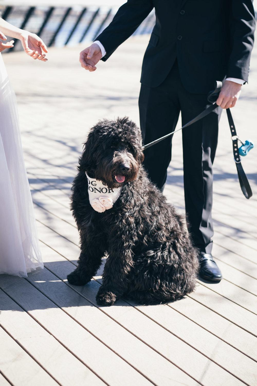 danandemily-wedding-web-190317-00116.jpg