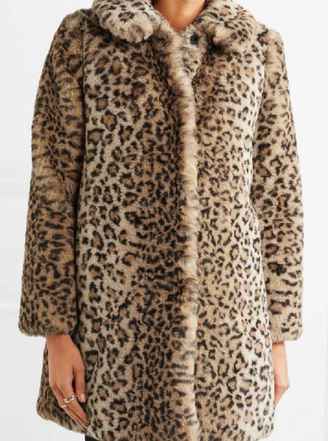 leopard (2).png