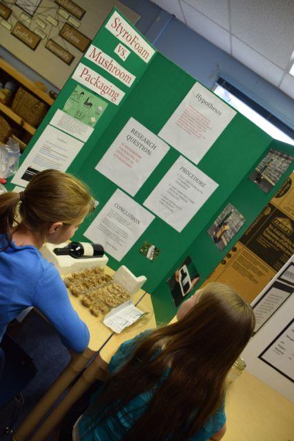science fair blog15.jpg