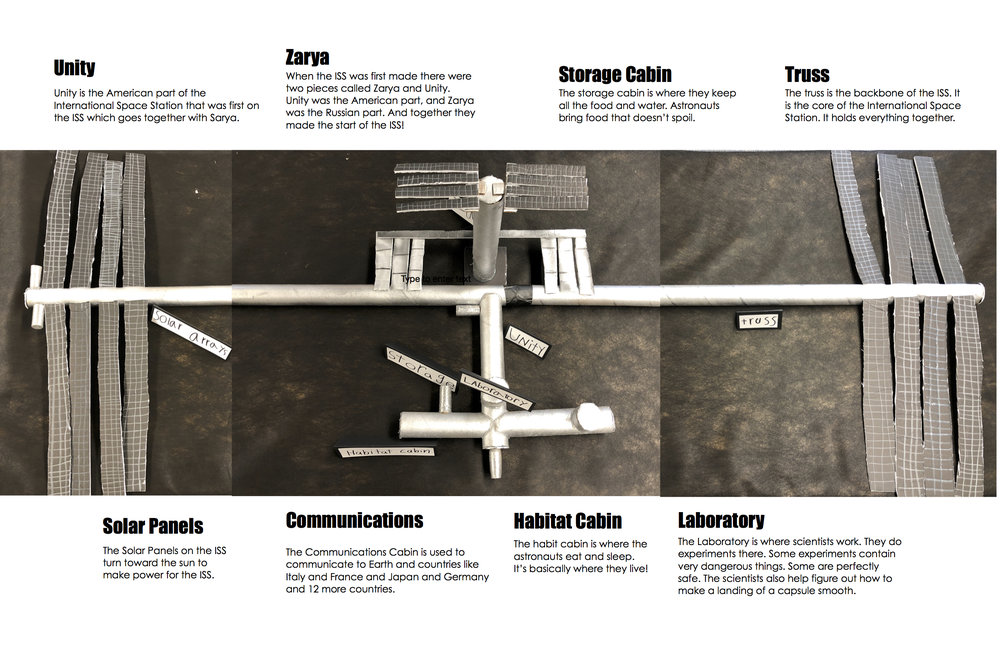 LP ISS model.jpg