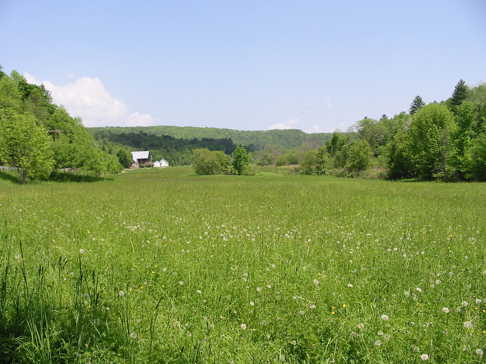 rogers farmstead sits on 133 acres in berlin, vt. the vermont land trust conserved the land in 2002.  Image courtesy of the vermont land trust.