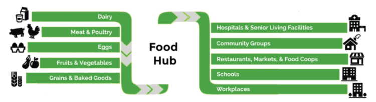 Food hubs connect farmers, food processors, distributors, and markets.  Graphic by    Sustainable Table   .
