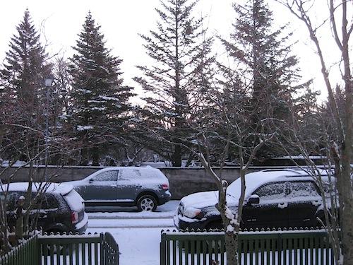 view from my front door