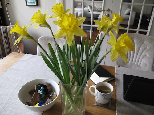Easter daffodils and the remains of a chocolate bunny