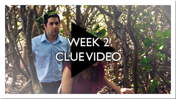 Week 2 Clue Video