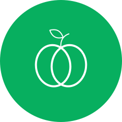 Icon apple2x.png