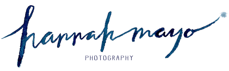 Palm Beach South Florida Photographer - Family, Wedding, Birth and Commercial