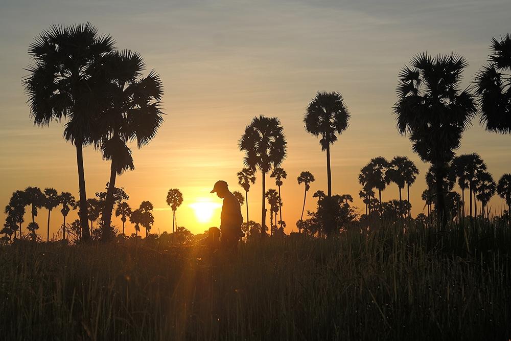 sunrise in siem reap
