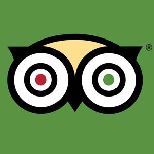 trip advisor app icon