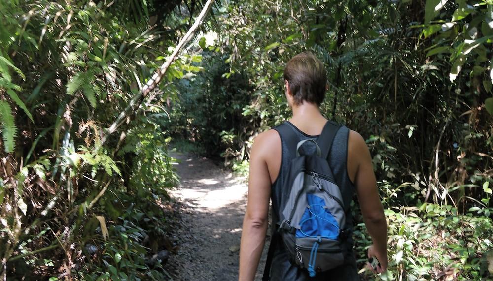 hike macrichie trail