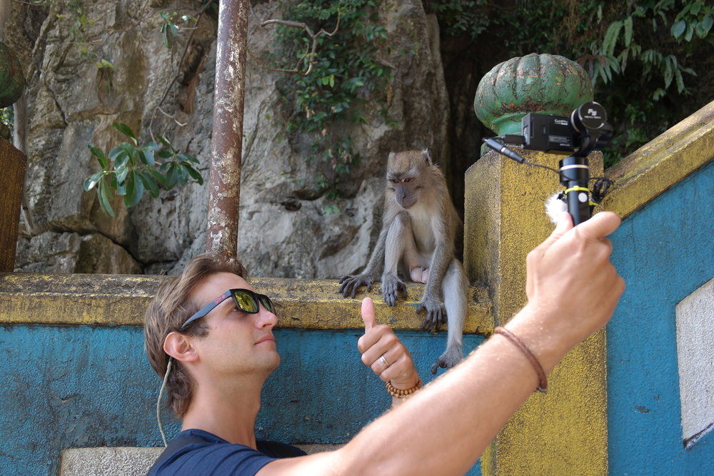 Never work with animals or children.  Unless you have a chance to work with monkeys.  Always work with monkeys.