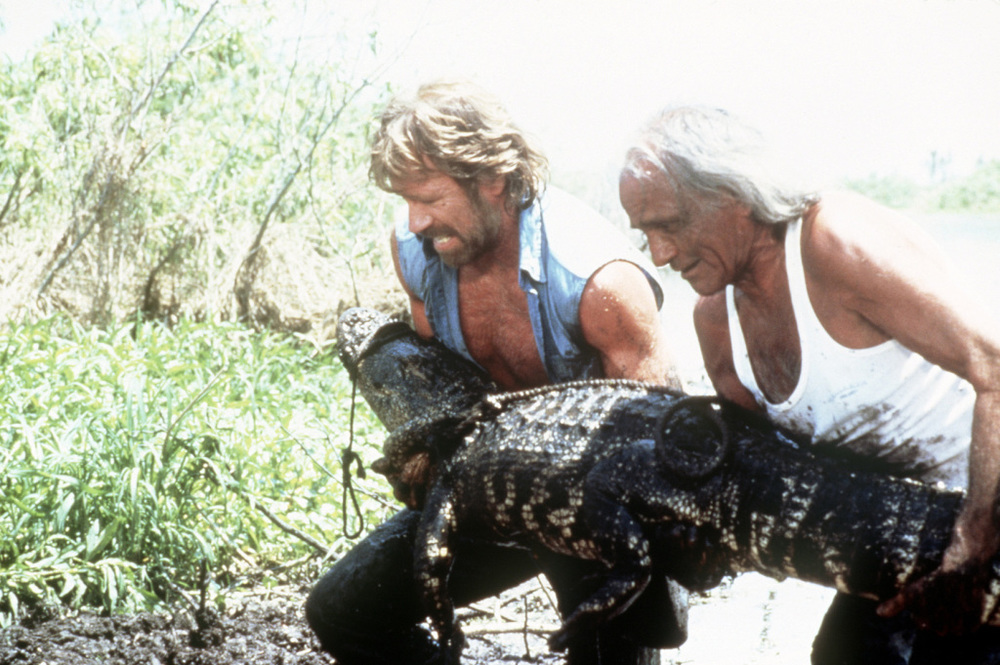 Alligators and aardvarks.  The life of Chuck Norris.