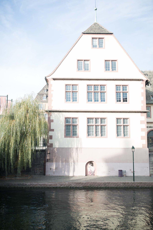 Art du Chanvre-strasbourg-10.jpg