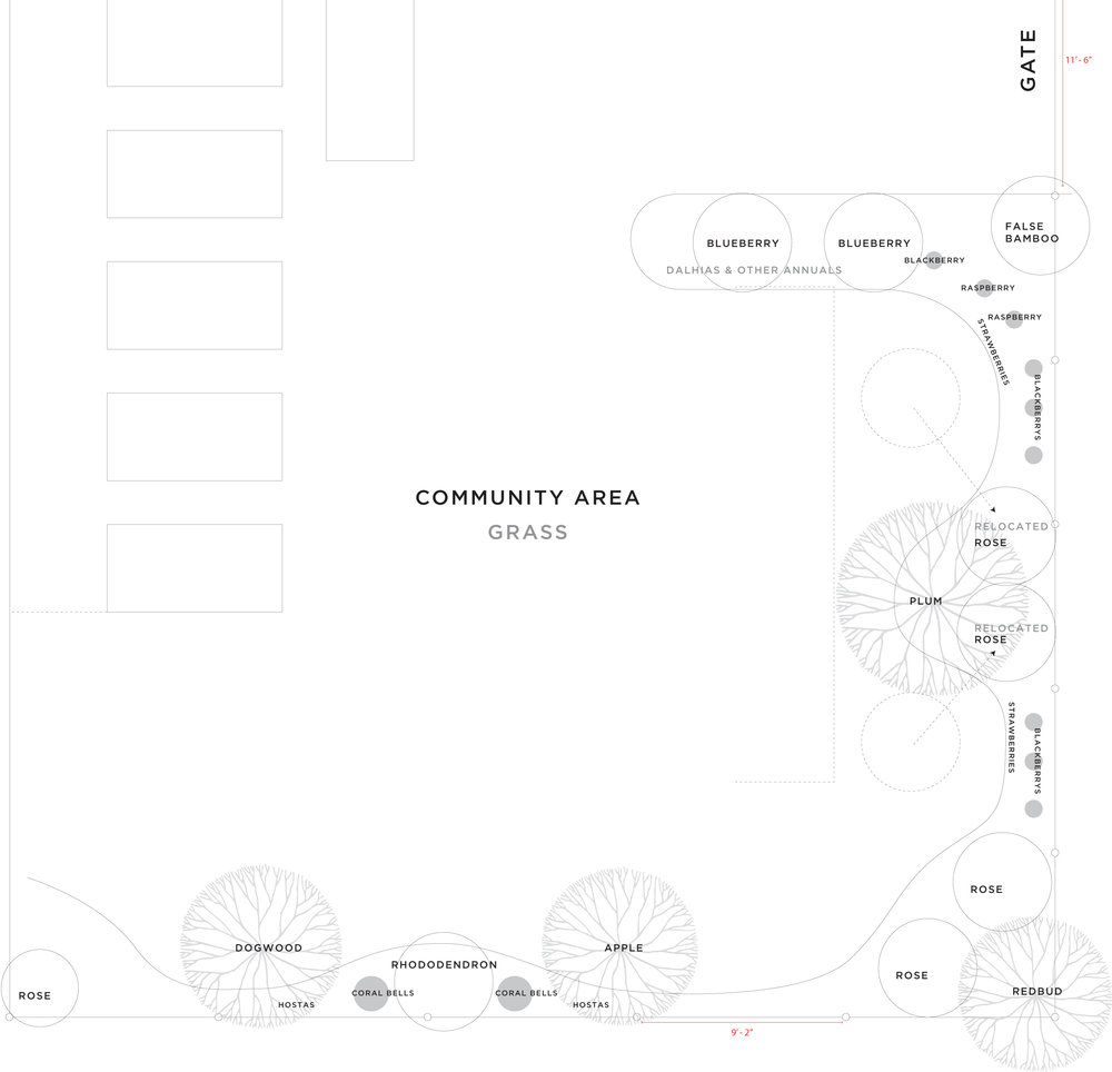 Community Area Plan