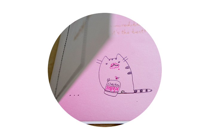 Lol @ Jon's drawing of Pusheen on my birthday card! I'm pretty much the Pusheen of this household :)