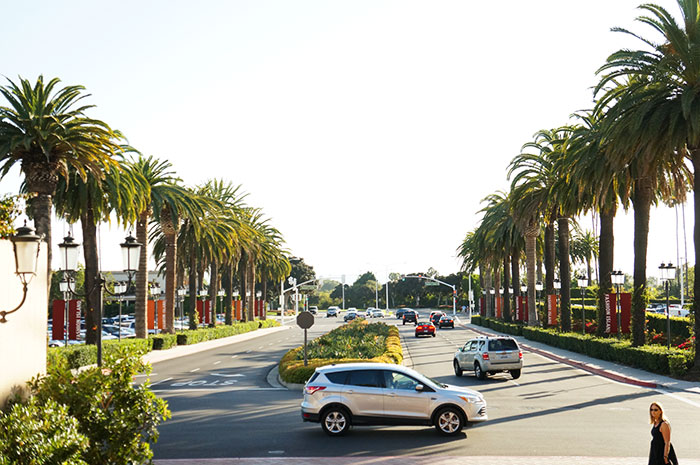 Stereotypical Orange County: Sun. Palm trees. And lots of SUVs.