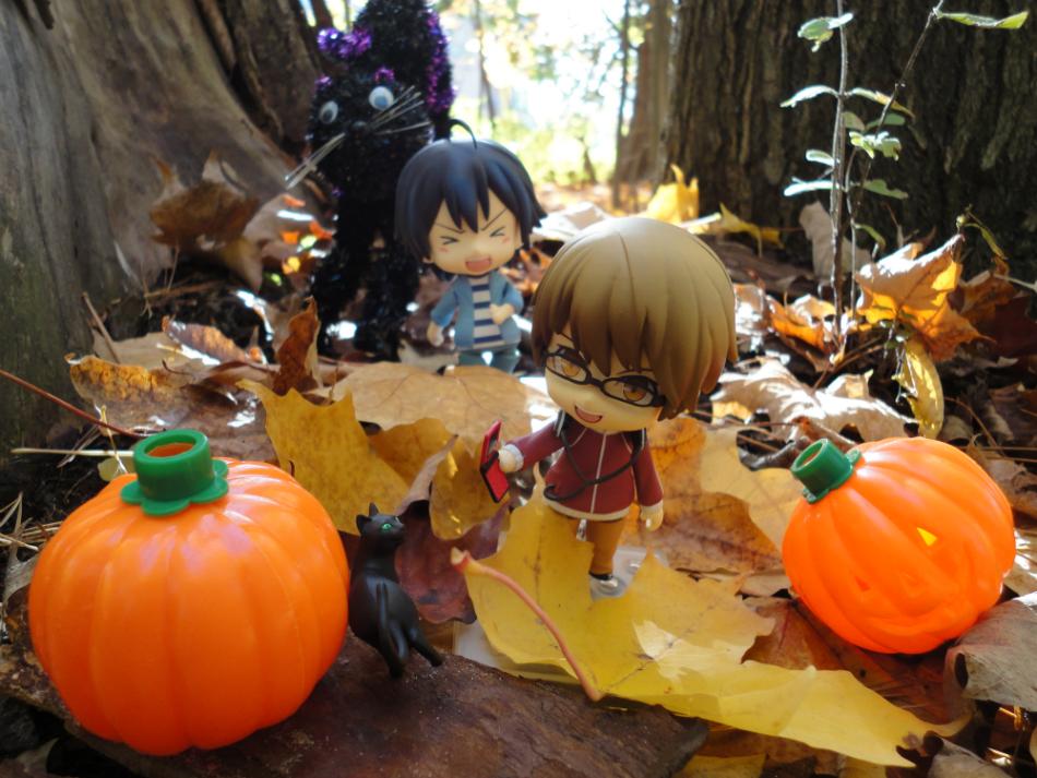 Pumpkins and Black Cats.jpg