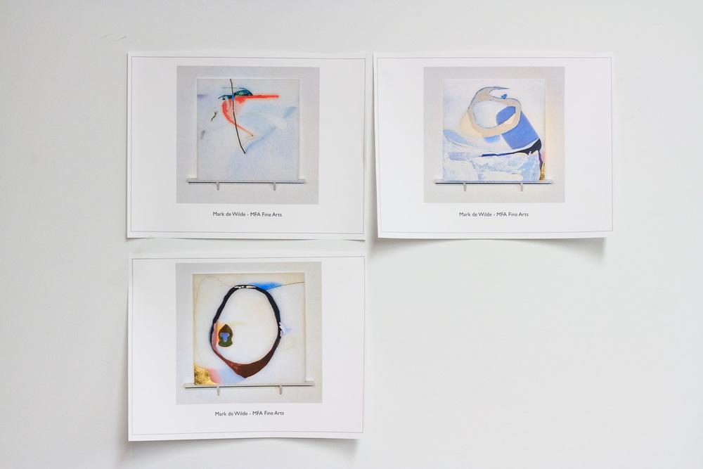 Works by Mark De Wilde - MFA Fine Arts