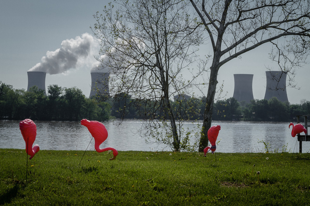 Plastic Flamingos, Three Mile Island, Pennsylvania