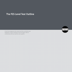 The FES Level Test - testing students ability for your company. DOWNLOAD THE BROCHURE HERE