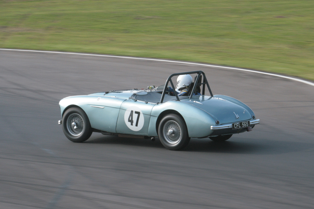 Neil Hardy in his Austin Healey 100                                   Photo - JohnTurner