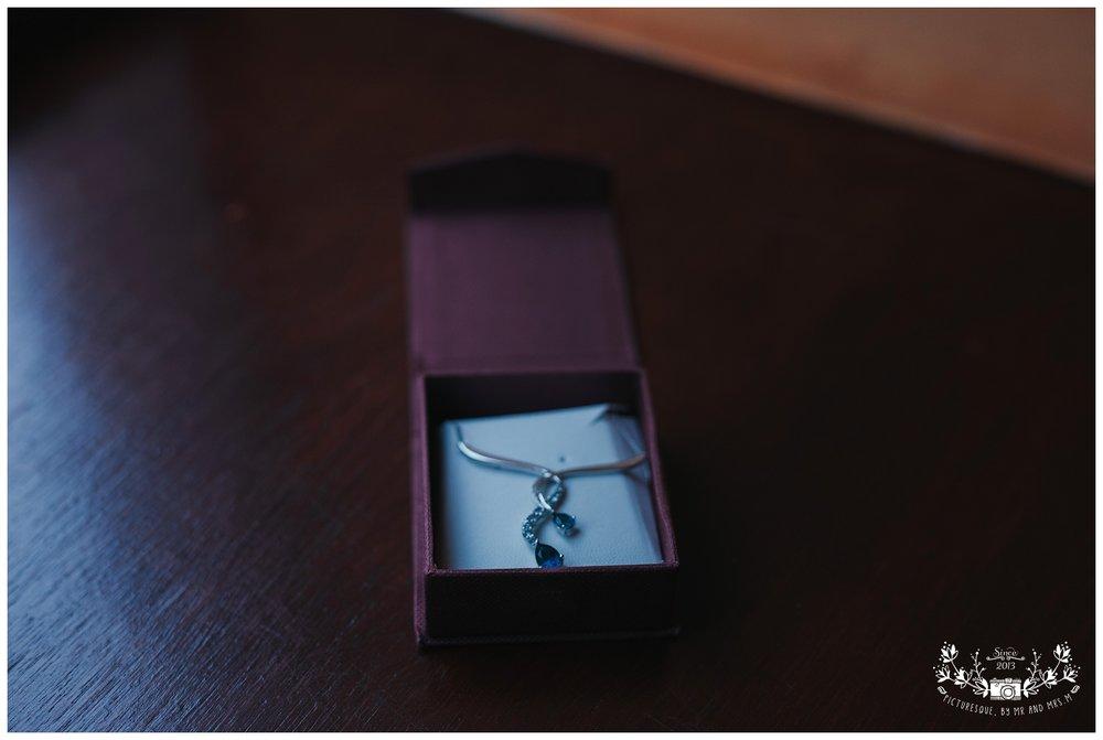 Cairngorms elopement, scottish elopement photography, Picturesquebymrandmrsm_0015.jpg