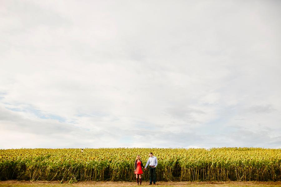 sunflower farm engagement