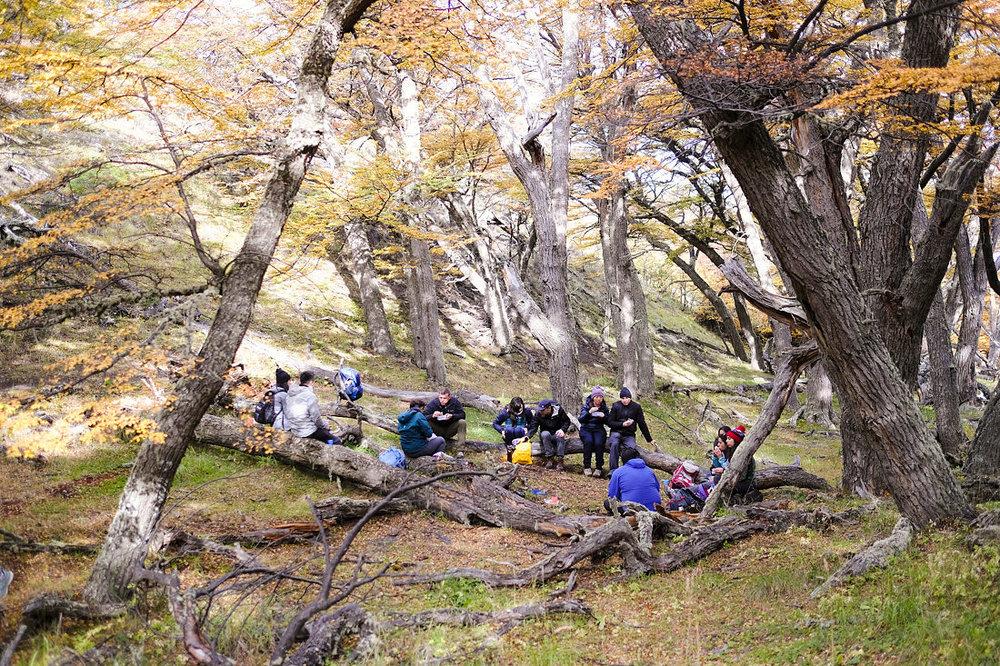 Patagonia-Chile-Wedding-Elopement-723.JPG