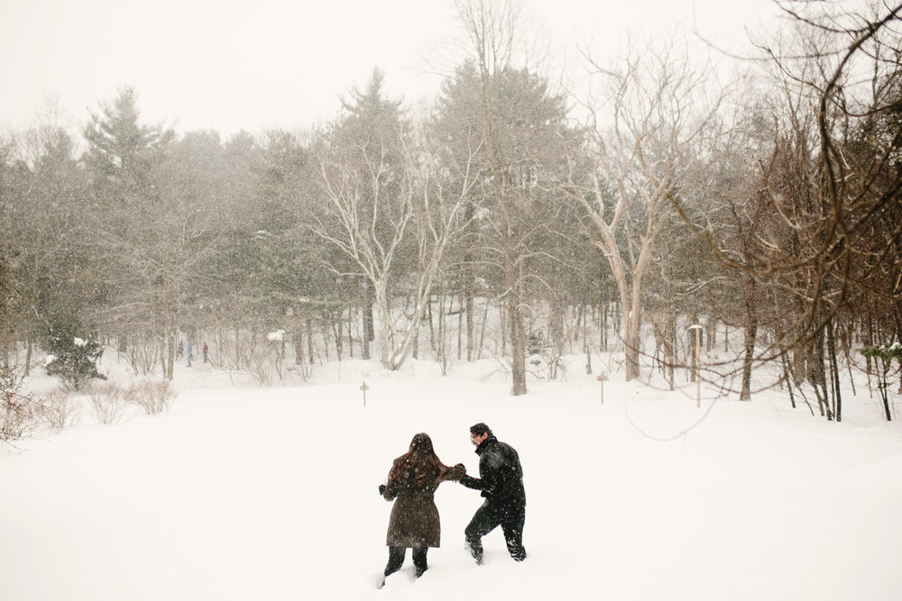 snowy engagement shoot in winter at mass audubon's habitat wildlife sanctuary in belmont