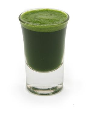 wheatgrass_shot_glass.jpg