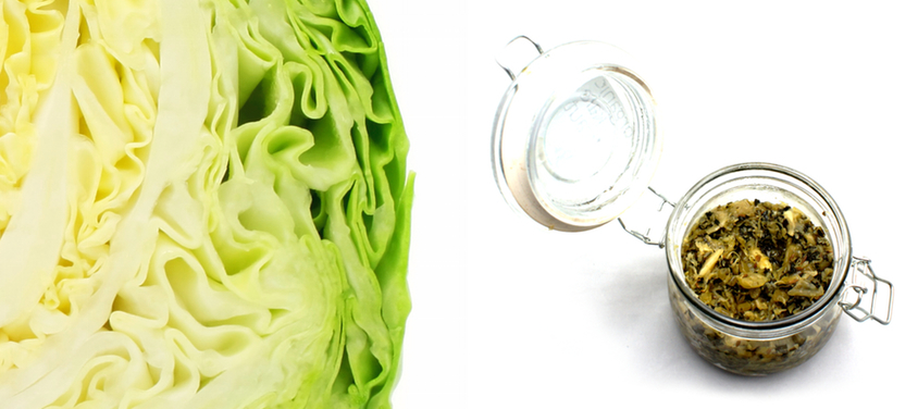 gallery cabbage3.jpg