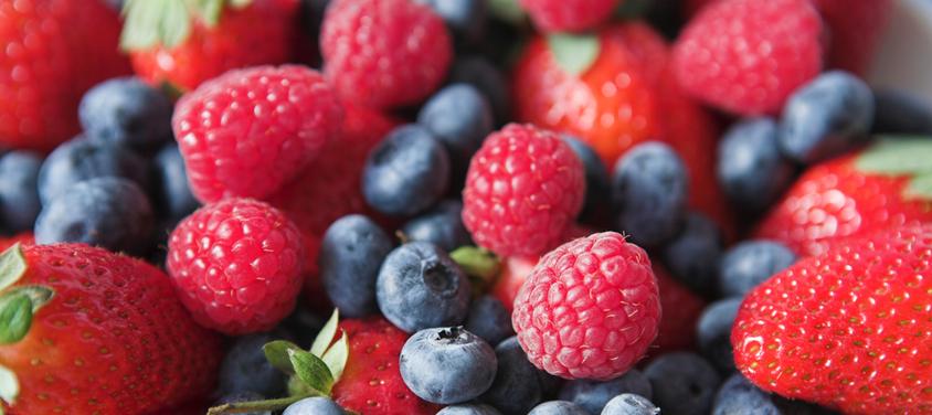 gallery berries.jpg
