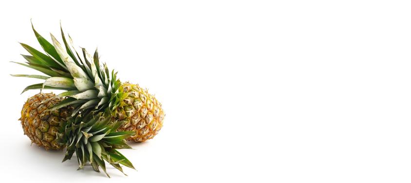 gallery pineaples2.jpg
