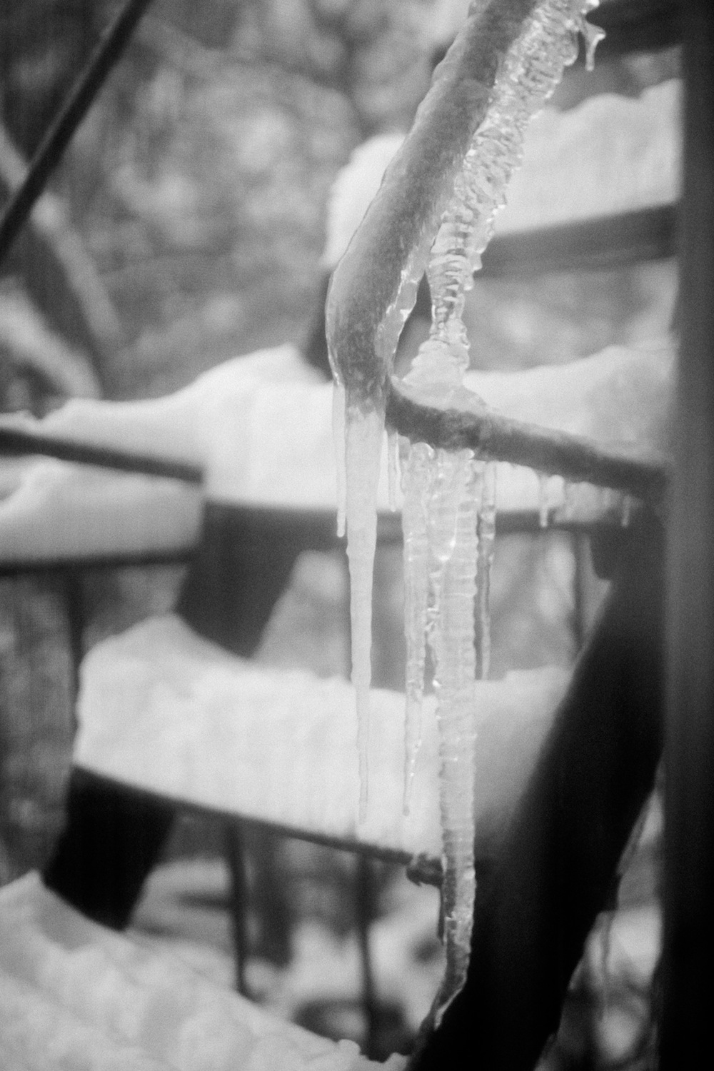 ice on the fire escape.jpg
