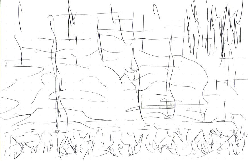 site sketch