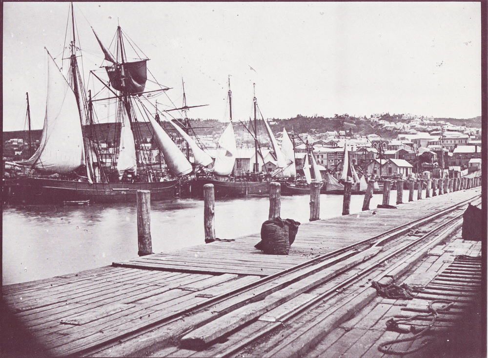 Sailing ships were a common site in 'early settler' times - Dunedin, Otago, South Island, New Zealand
